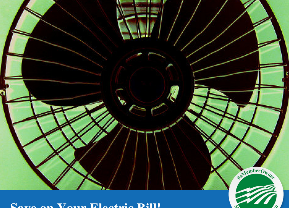 Eight Surefire Ways for Summer Savings on Your Electric Bill